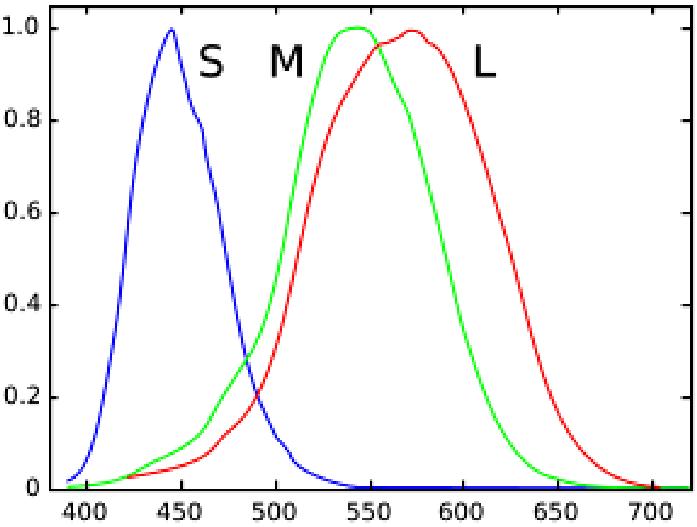 Helmholtz - Modelo tricoromático